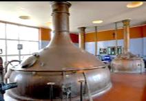 bierproeven